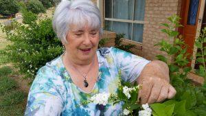 Thelma raids the garden for some foliage
