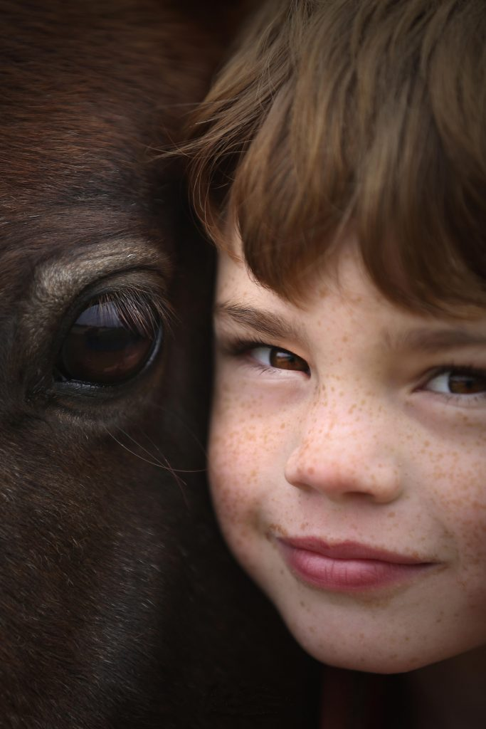 """""""Horse Boy' by Ann Killeen wins photographic prizes."""